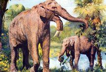Prehistoric/Extinct animals
