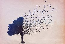 trees / by Beverly Teran