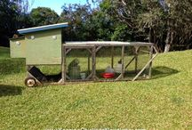 Chicken Tractors / For chickens on the go!