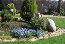 Ogród / ogrodowe marzenia do spełnienia