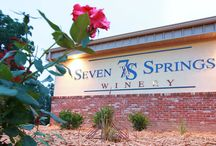 Seven Springs Winery / Check out these pictures of our indoor and outdoor facilities at Seven Springs Winery at the Lake of the Ozarks!