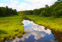 beautiful Delaware!!