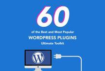 Design: Wordpress