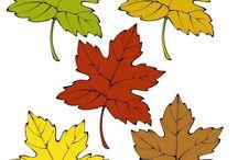 01 JESEN, PODZIM, autumn