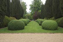 Pardon the Garden :)
