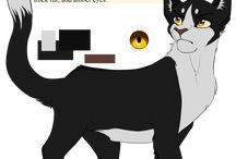 Appearance warriors / I loaf warrior cats