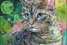 коты-кошки