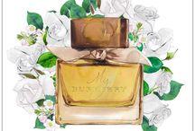 Parfum Watercolor Illustration