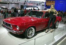 Ford Mustang / O Pony car da Ford em várias versões.