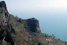 Cantine Marisa Cuomo / L'Azienda vitivinicola Cantine Marisa Cuomo situata nella splendida cornice della Costiera Amalfitana, rappresenta oggi una delle realtà più interessanti del Mezzogiorno.