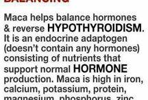 Herbs for Hormones