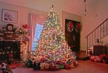 Alberi / Alberi decorati per Natale