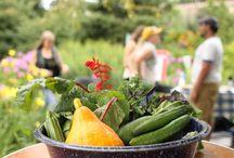 Local Food & Gardening
