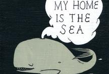 Aquáticos e marinhos do mar azul