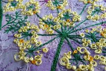 Fennel blossom