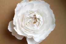 Flowers / Wedding flower ideas