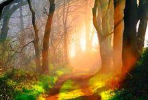 Imágenes hermosas del mundo en que vivimos. / Colección de imágenes hermosas de todo el mundo, animales, flores y paisajes. / by Vida Lúcida