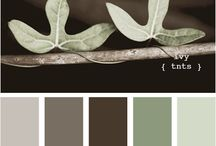 Home - Color Schemes  / by Sara Holida Gleason