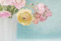 Pastels / by Vicki