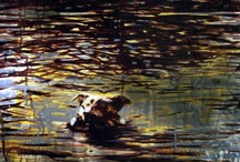 Paintings - Swimming Dogs / Oil paintings by Sarah Hatton.  #art #water #surfaces #nature #swimming #animals #dogs #reflections #canadianart #painter #landscape