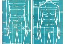 Scienza Matematica