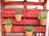 Home:  Pallet Re-Use Ideas / by Erica Hernandez