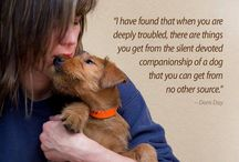 ~ ANIMALS MATTER!! ~ / RESCUE THE ABUSED  *  LOVE THE ABANDONED
