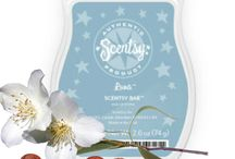 Scentsy / by Rheanne Veazey