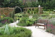 belevingstuinen - sensory gardens