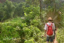 Trekking Mai Chau Vietnam