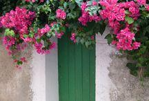Welcome... / The doors