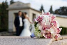Wedding Alexandra & Bogdan