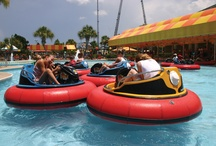 Play | Things to Do in Gulf Shores & Orange Beach / Things to Do in Gulf Shores & Orange Beach