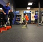 Group Training / Designed for children and families looking for extra physical activities provided in a fun and friendly environment. BIO Force's Group Training program combines circuit training, functional training, and SAQ training.
