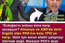 POLİCY