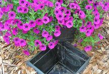 blossom bliss & yard art