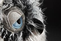 Owls / by Gaby Rau