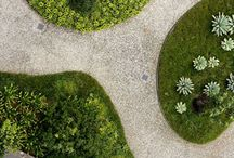 LANDSCAPE ARCHITECTS / by Xochicali Vivero