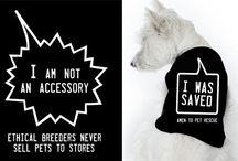 Animal activism