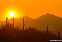 Tucson  / My very favorite place to Exhale & Relax!!!!  / by Carol Kolu