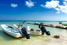 Isla Holbox / Un paraíso en el mar