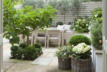 Tuin idee / Ideeën voor de kleine tuin