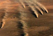 Desert Race Culture