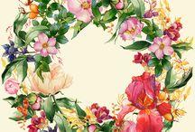 цветы Г