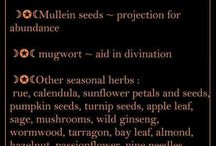 Witchy - Herbs