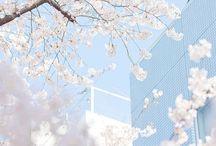 « Pastel blue aesthetic »