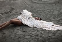 a: angel et demon / you are nothing but a bird with an attitude