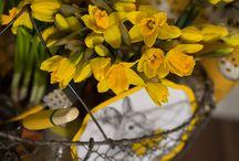 Yellow - kolor żółty
