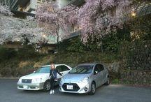 Meu album / Sobre a naturza primavera no japao