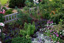 I'm in the Garden / Gardens I like.  ideas for summer gardens